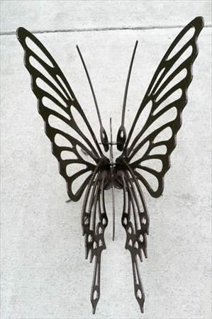 02_Butterfly